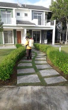 5 Eco-Safe Landscaping Ideas